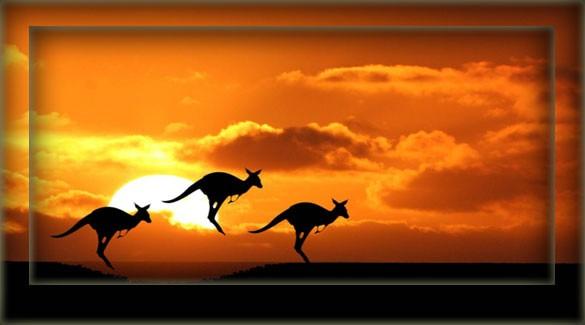 Австралия - краткая информация