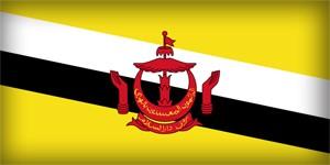 Флаг Брунея