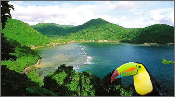 Флора и Фауна Американского Самоа