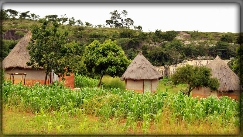 Зимбабве (Zimbabwe)