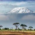 Кения - краткая информация