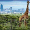 Кения (Kenya)