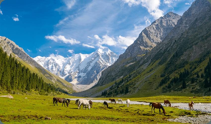 Киргизия (Кыргызстан) - краткая информация