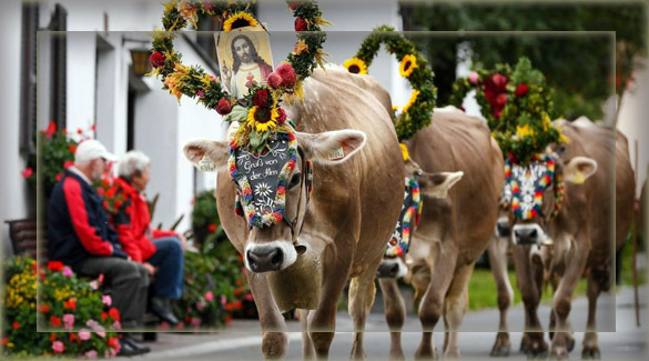 Праздники Австрии