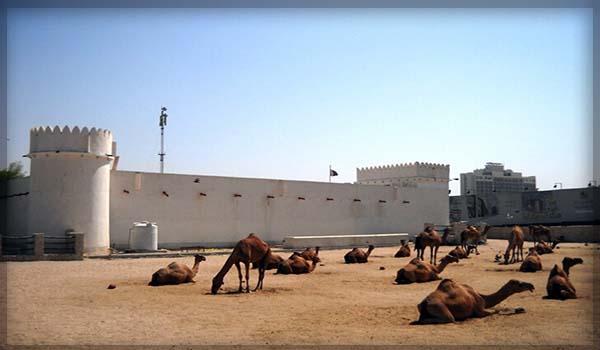 Форт Аль Кут в Катаре