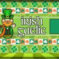 Язык в Ирландии