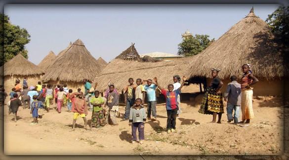 Население Гвинеи