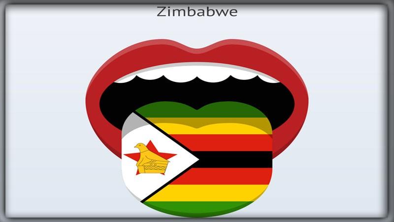 Языки в Зимбабве