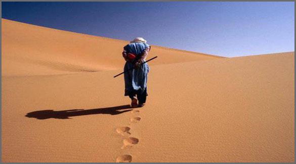 одежда-Алжира